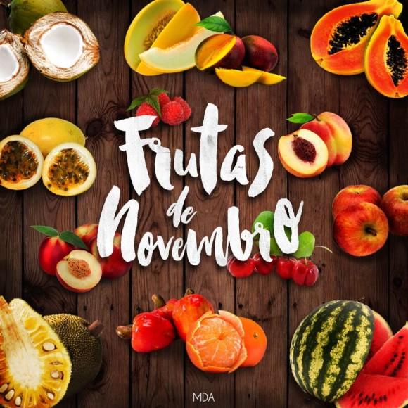 frutas-de-novembro